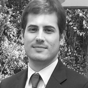 Francesco Panella, Ingegnere in Brick.